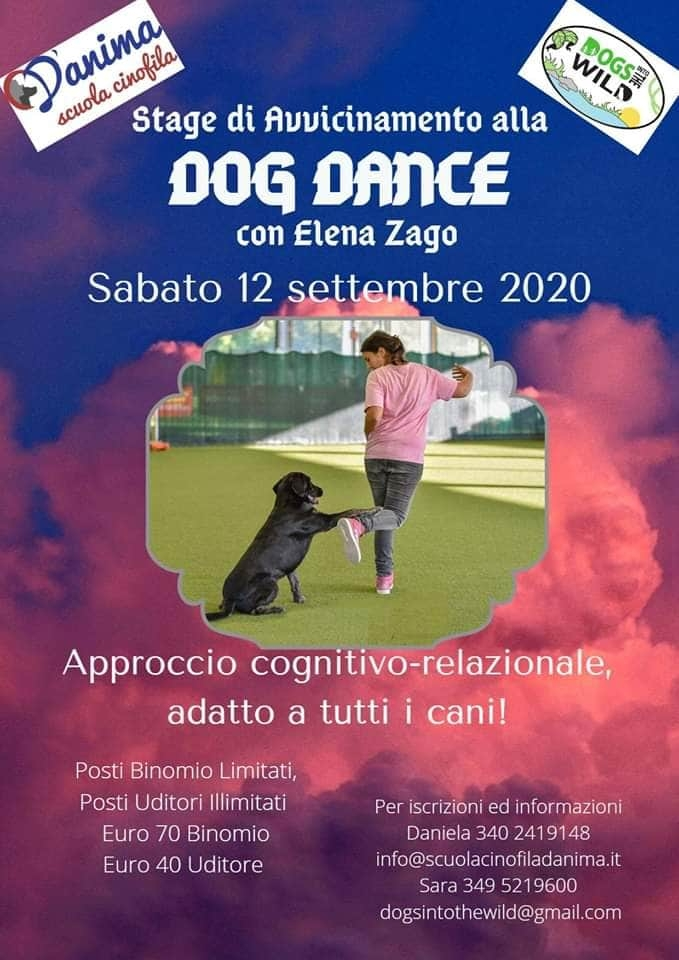 Stage di Dog Dance