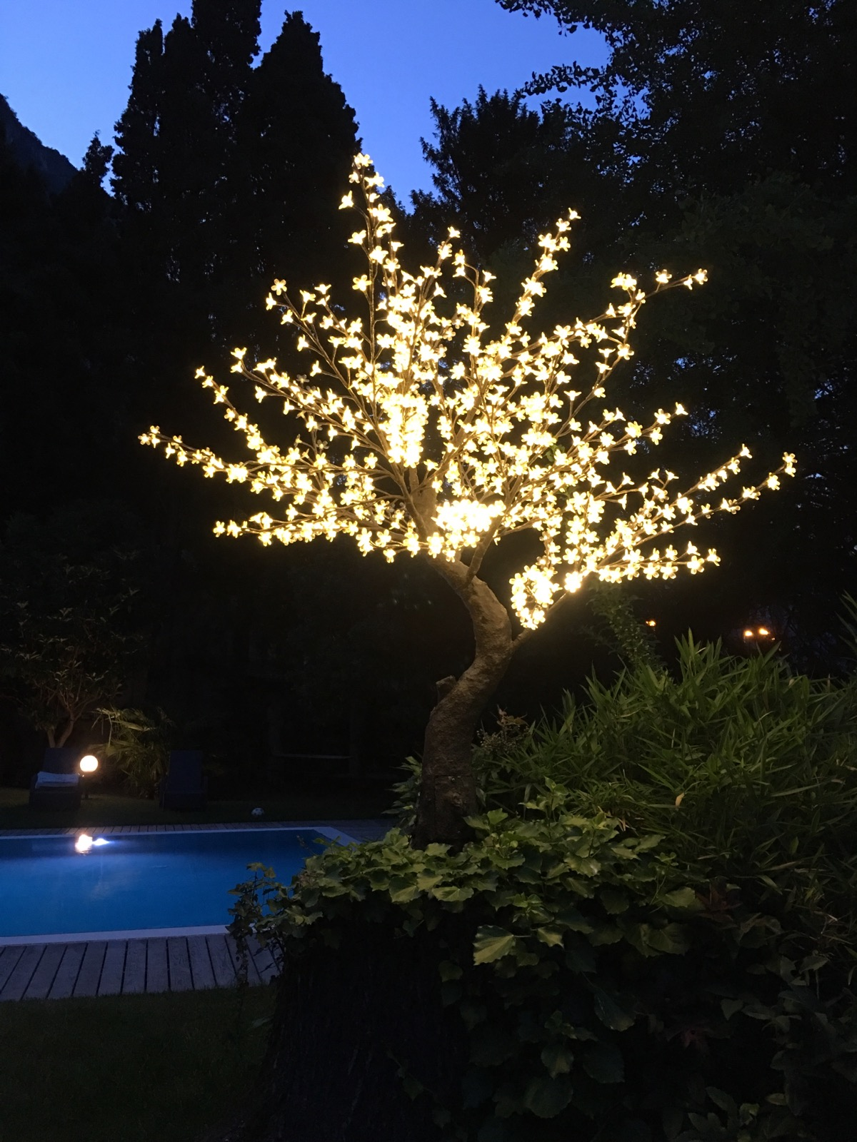 Led Tree at the pool