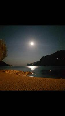 MOON LIVE PURFINA BEACH - ---