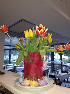 Spring time at the Bellariva restaurant