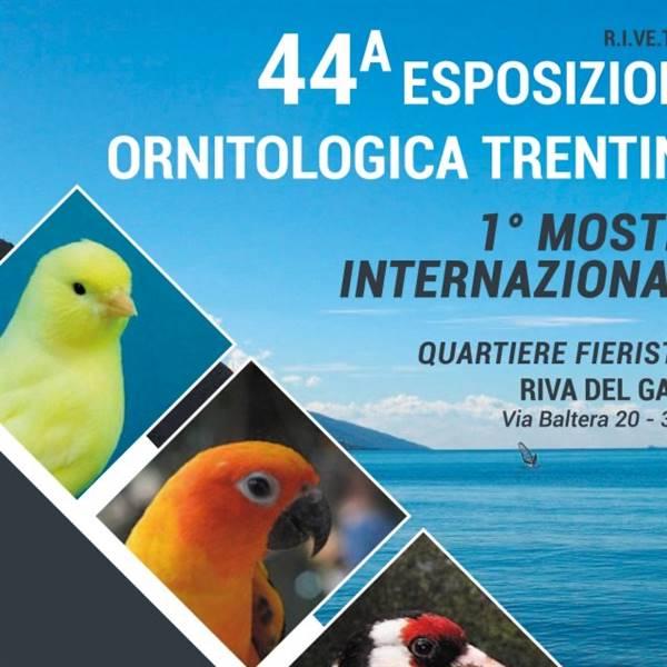44° ESPOSIZIONE ORNITOLOGICA - RIVA DEL GARDA - Lake Garda